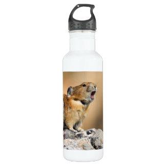 pika howling 24oz water bottle