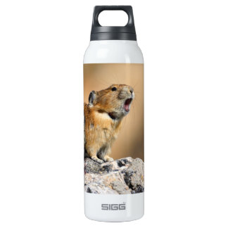 pika howling 16 oz insulated SIGG thermos water bottle