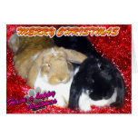 Pika & Ollie Tinsel Xmas - Rabbit Bunny Christmas Cards