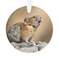 Pika Ornament