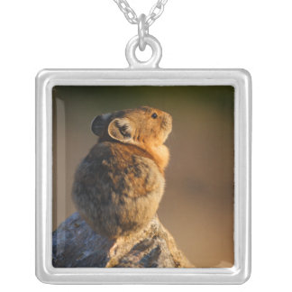 pika silver plated necklace