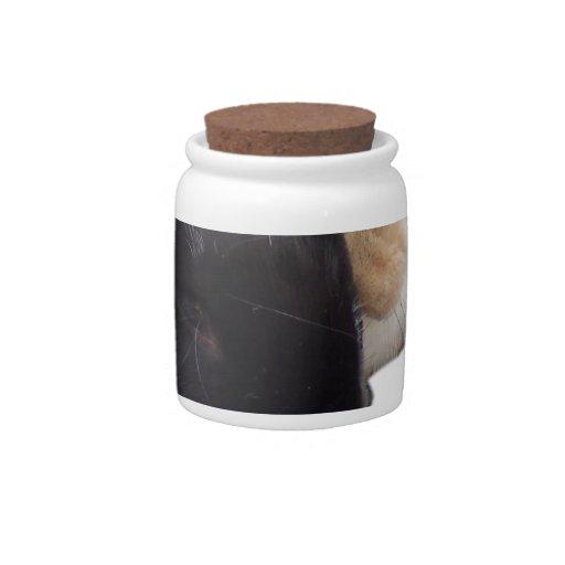 Pika y conejitos de Ollie Platos Para Caramelos