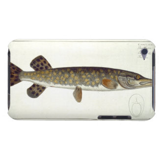 Pike (Esox Lucio) plate XXXII from 'Ichthyologie, iPod Touch Case-Mate Case