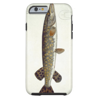 Pike (Esox Lucio) plate XXXII from 'Ichthyologie, Tough iPhone 6 Case