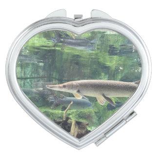 Pike Fish Compact Mirror