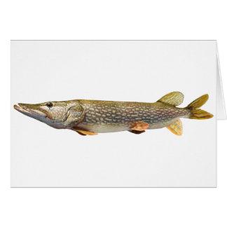 Pike Muski fishing Greeting Card