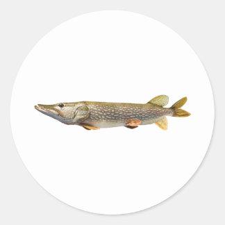 Pike Muski fishing Classic Round Sticker