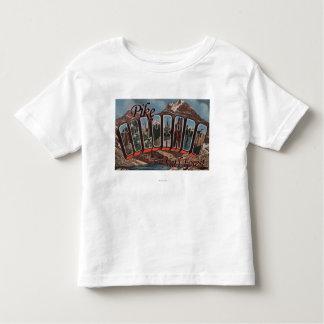 Pike Nat'l Forest, Colorado - Large Letter Scene Toddler T-shirt