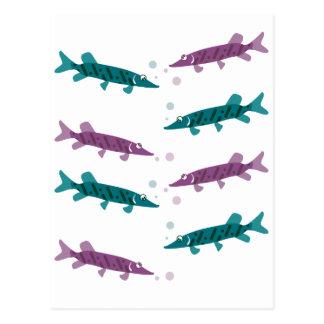 Pike pattern postcard