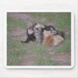 Pila de gatitos tapete de ratón