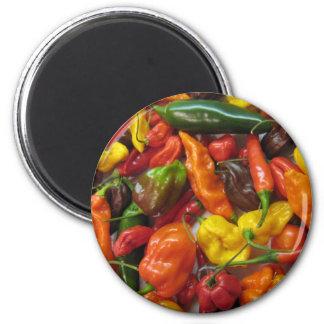 Pila del chile imán redondo 5 cm