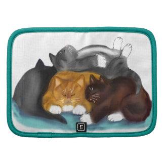 Pila del gatito el dormir organizadores