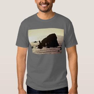 Pila del mar - del parque nacional de la secoya playera