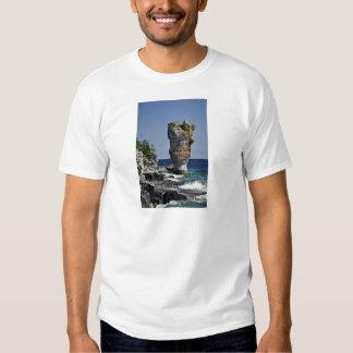 Pila del mar, isla de la maceta, península de remera