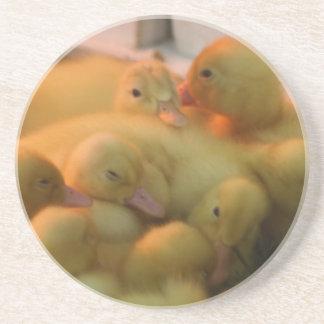 Pila del polluelo del bebé posavasos manualidades