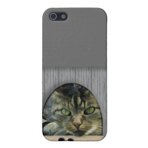 Pilar del gato y del ratón iPhone 5 fundas