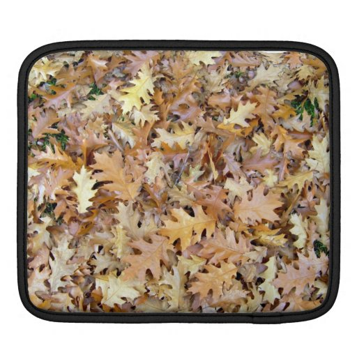 Pile of Autumn Leaves on Grassy Landscape iPad Sleeves