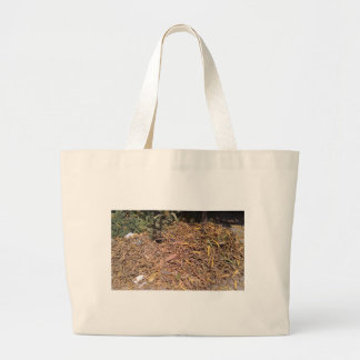 Pile of dried leaves and grass bags