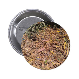 Pile of dried leaves and grass pinback button
