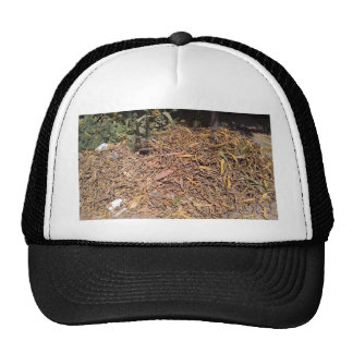 Pile of dried leaves and grass hats