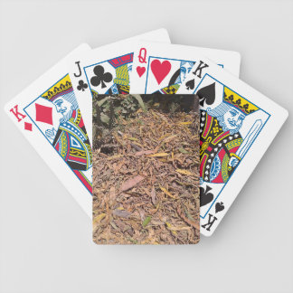 Pile of dried leaves and grass bicycle playing cards