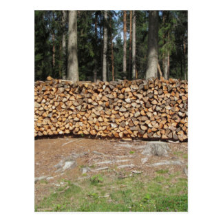 Pile of firewood with forest background postcard