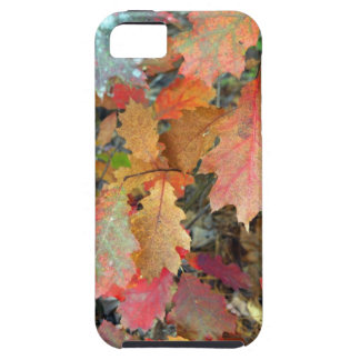 Pile of Leaves iPhone 5 Cover