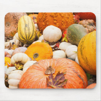 Pile Of Pumpkins And Squash Mouse Pad