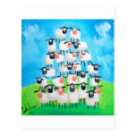 Pile of sheep post card