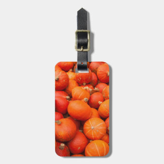 Pile of small pumpkins, Germany Luggage Tag