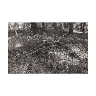 Pile of Sticks - Warm Toned Black and White Canvas Print