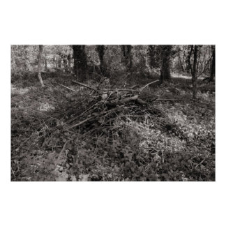 Pile of Sticks - Warm Toned Black and White Poster