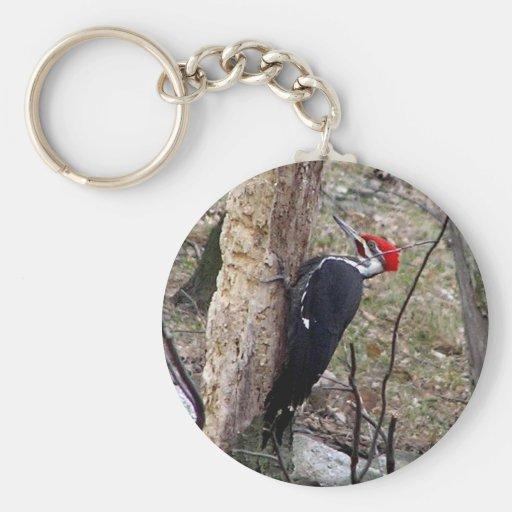 Pileated Woodpecker Basic Round Button Keychain