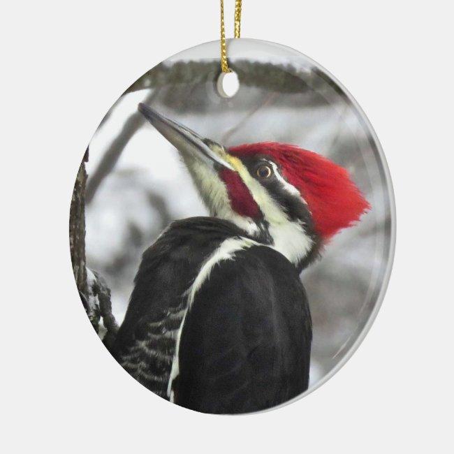 Pileated Woodpecker Bird Ornament