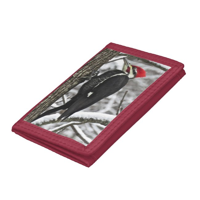 Pileated Woodpecker Bird Wallet