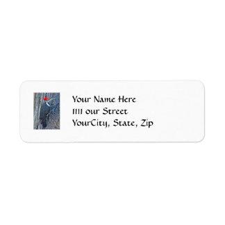 Pileated Woodpecker Coordinated Items Custom Return Address Labels