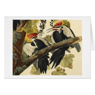 Pileated Woodpecker, John James Audubon Greeting Card