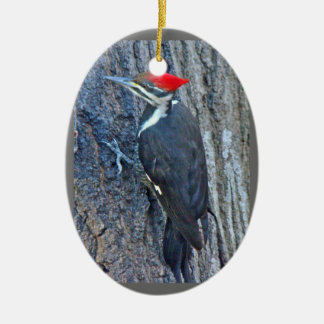 Pileated Woodpecker Merry Christmas Ornament