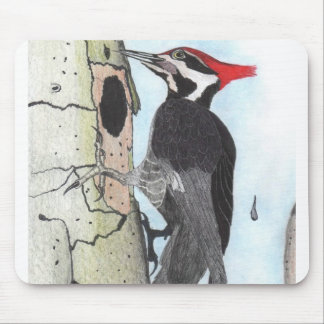 Pileated Woodpecker Mouse Pad