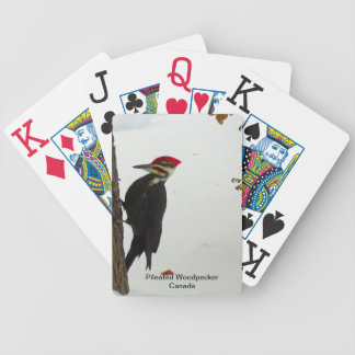 Pileated Woodpecker Playing Cards