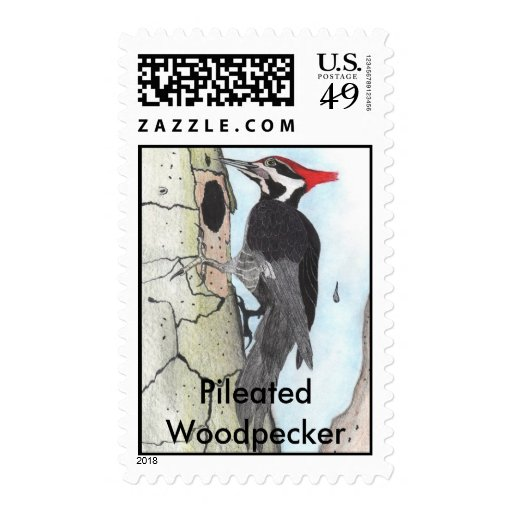 Pileated Woodpecker Postage Stamps