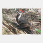 Pileated Woodpecker Towels