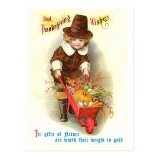 Pilgrim Boy Vintage Thanksgiving Illustration Post Card
