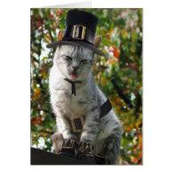Pilgrim Cat Greeting Card
