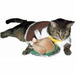 Pilgrim kitty cat shaped magnet/ornament/keychain photo sculpture