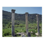Pillars For The Sky Postcard