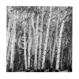 Pillars Of The Wilderness Tile