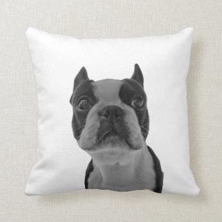 pillow boston terrior