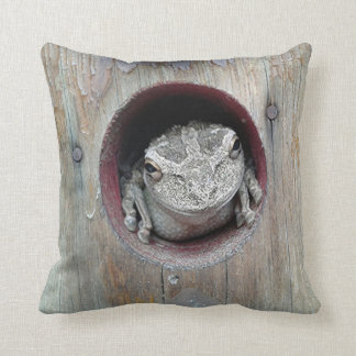Pillow -Frog with Look of Stone