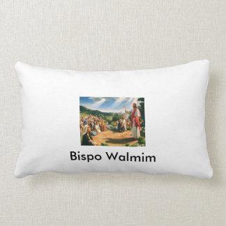 Pillow I